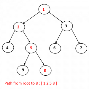 path from root to Node example