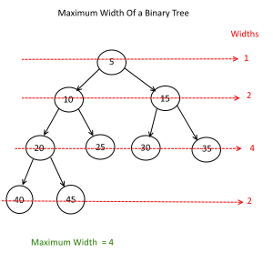 Maximum width of a given tree